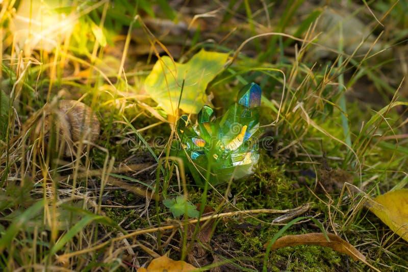 Blänka gröna magiska kristaller i skogen royaltyfri foto