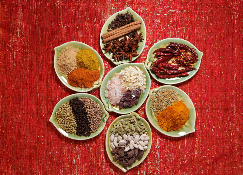 blänka plattor sju olika kryddor royaltyfri bild