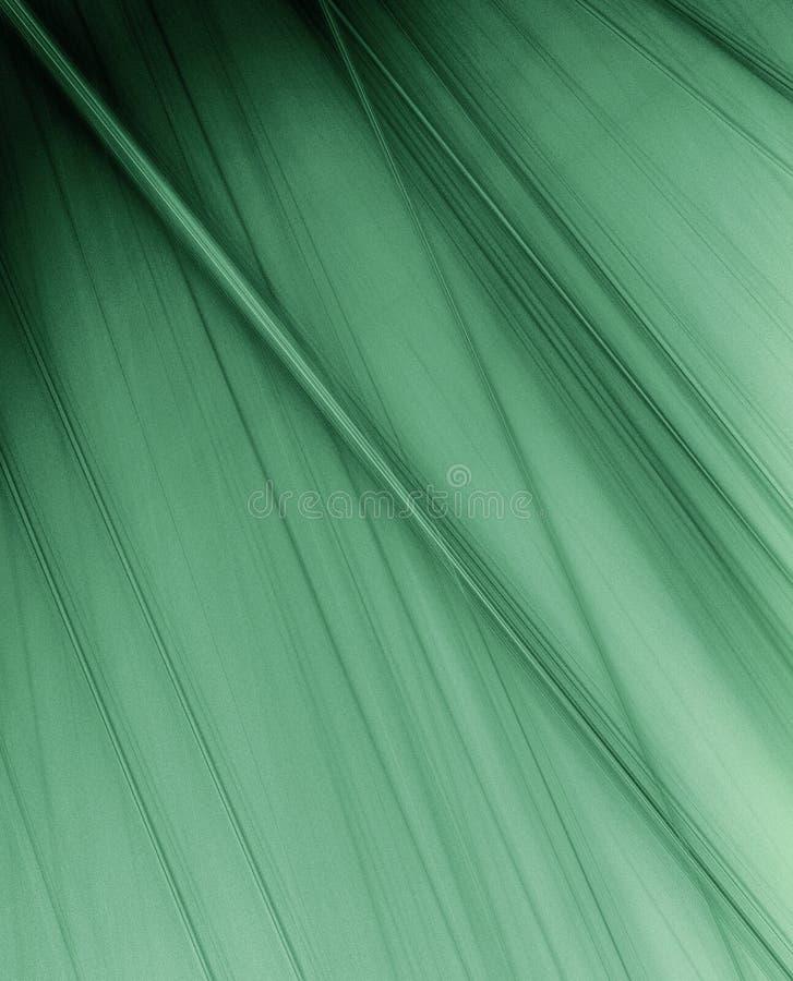 Download Blätter stock abbildung. Illustration von frisch, ascetic - 12202354