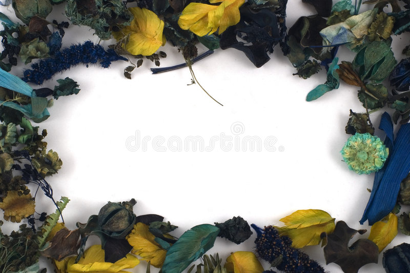 Blätter lizenzfreies stockbild
