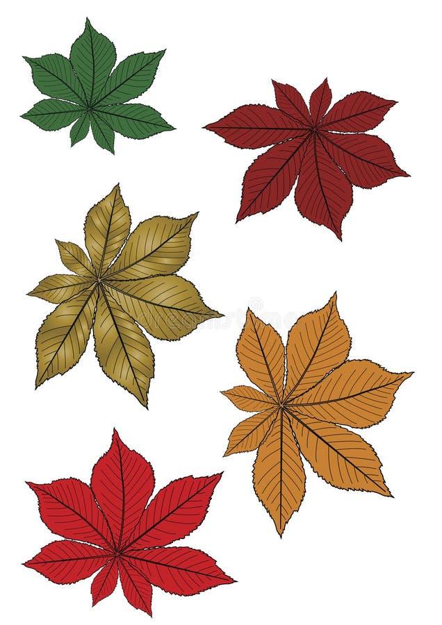 Blätter in den Farben lizenzfreie abbildung