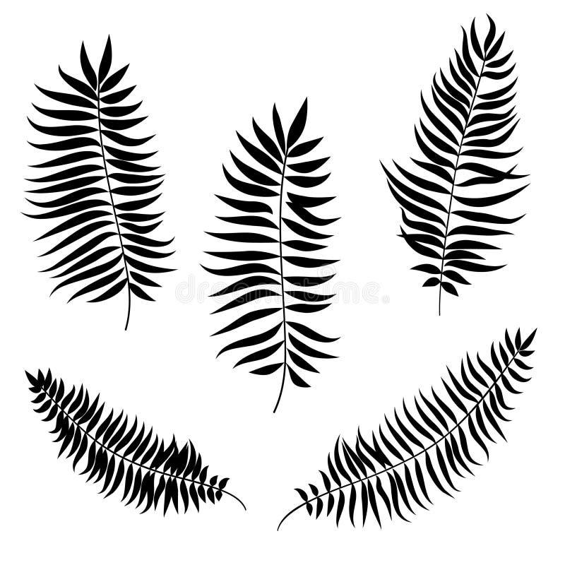 Blätter eingestellt Palmblatt-Schattenbilder lizenzfreie abbildung