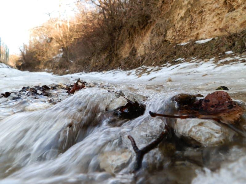 Blätter und Felsen trugen entlang durch Wasser von geschmolzenem Schnee stockfotografie