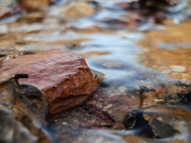Blätter und Felsen trugen entlang durch Wasser von geschmolzenem Schnee lizenzfreie stockbilder