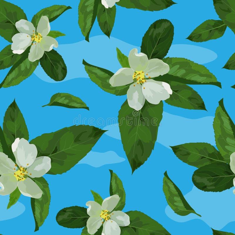 Blätter von apple-01 stock abbildung