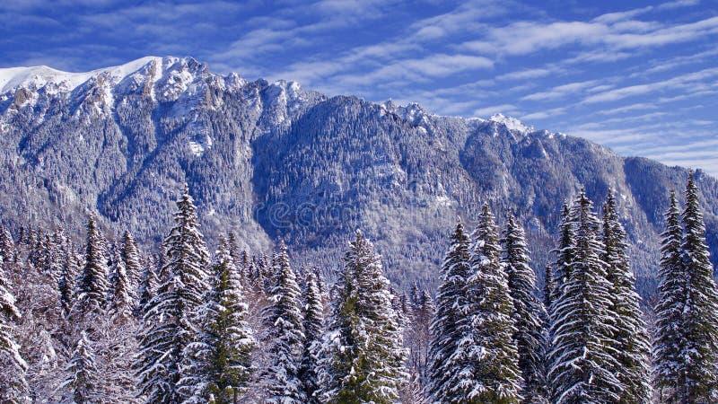 Blå bergöverkant fotografering för bildbyråer