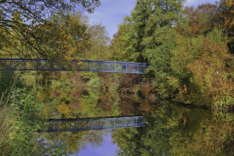 Blå bro som omges av kulöra träd arkivbild