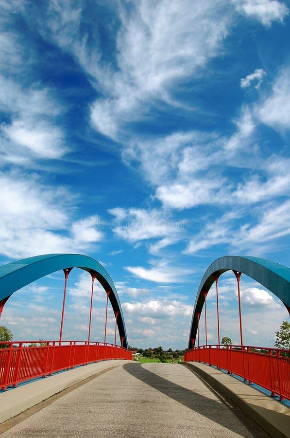 blå brosky under royaltyfri fotografi