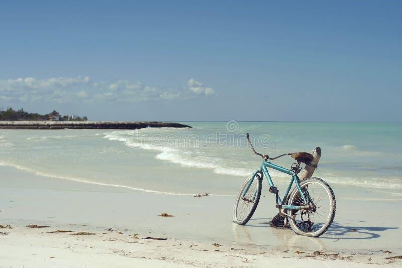 Blå cykel royaltyfria foton