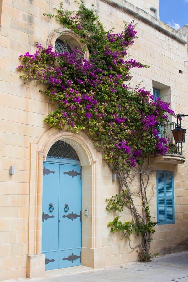 Blå dörr med blommor i Malta arkivbild