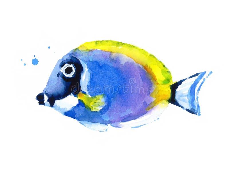 Blå dragen Coral Reef Fish Watercolor Illustration hand stock illustrationer