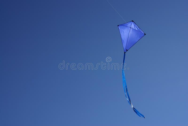 blå drake fotografering för bildbyråer