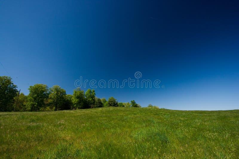blå fältgreensky royaltyfri bild