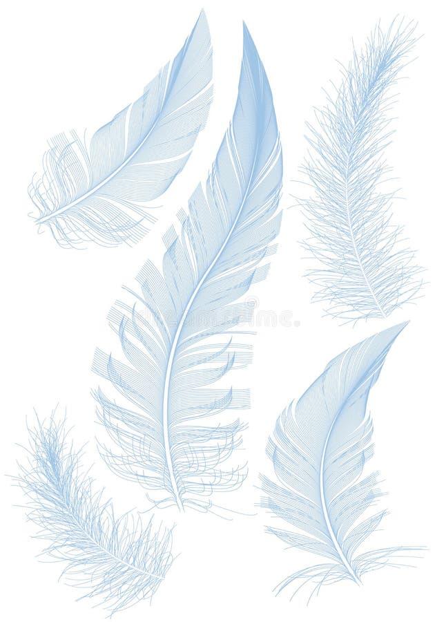 blå fjäder vektor illustrationer