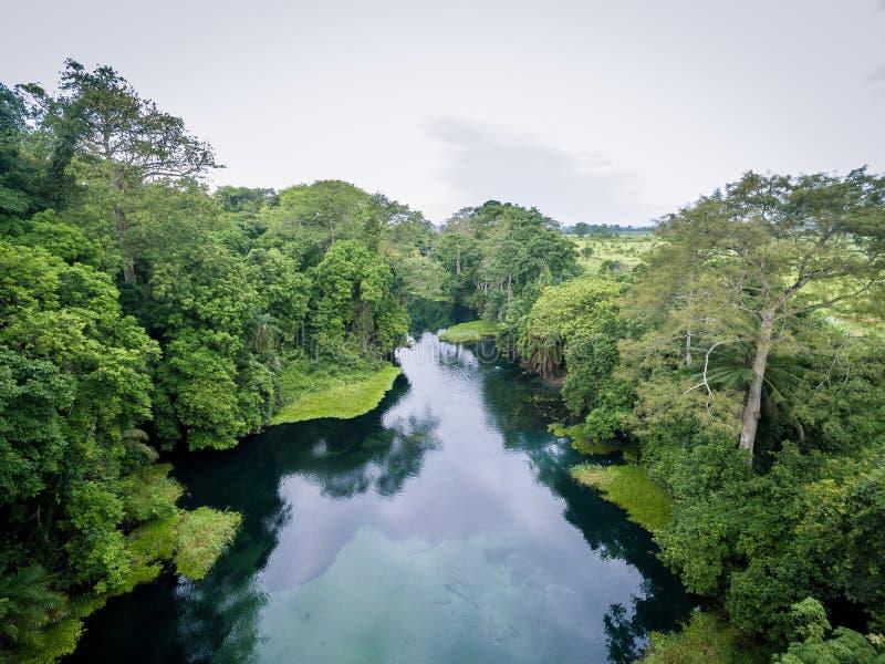 Blå flod/Tulu flod/Niari flod, Kongofloden royaltyfria bilder