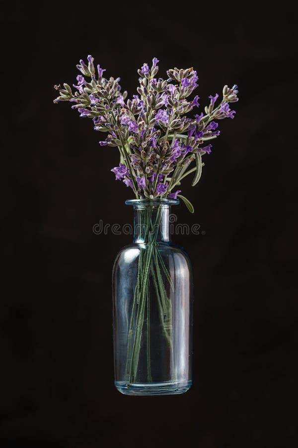Blå glasflaska med lavender blommor på svart bakgrund. Aromatherapy arkivfoto