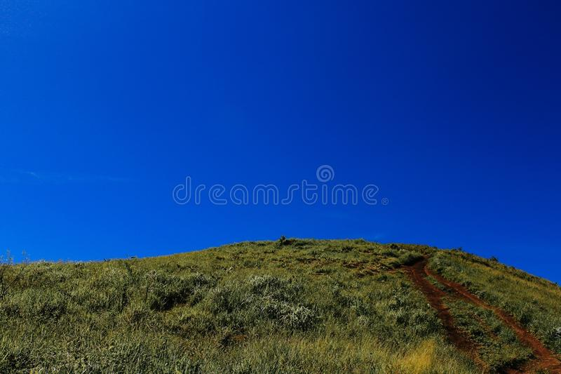 Blå grön kulle arkivfoto