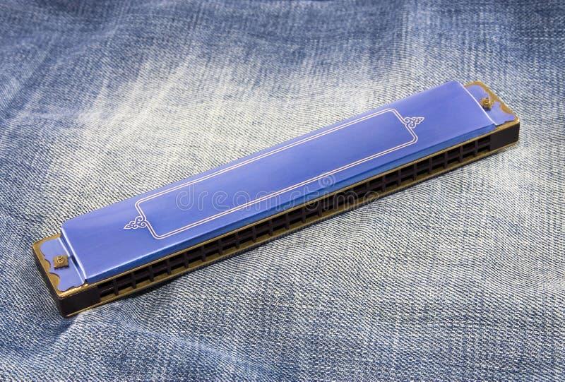 blå harmonica royaltyfri foto