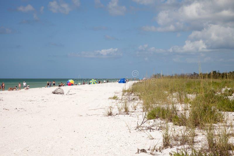 Blå himmel över vit sand och grönt strandgräs av Tigertail Beac arkivfoton