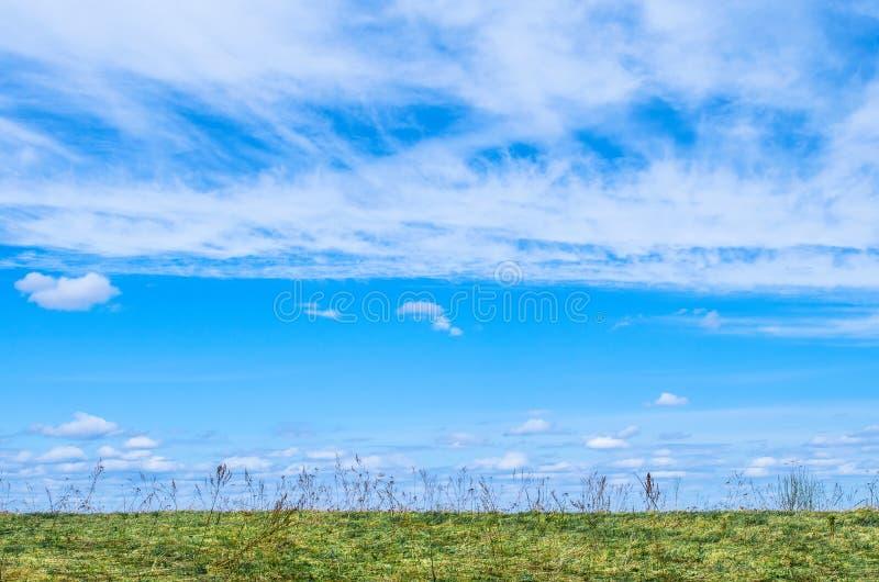 Blå himmel för bakgrunds- och vitcirrusmolnet, cirrusmoln-som moln under fältet och gräset royaltyfria foton
