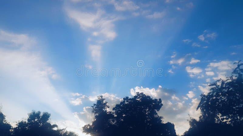 Blå himmel i morgontid royaltyfri bild