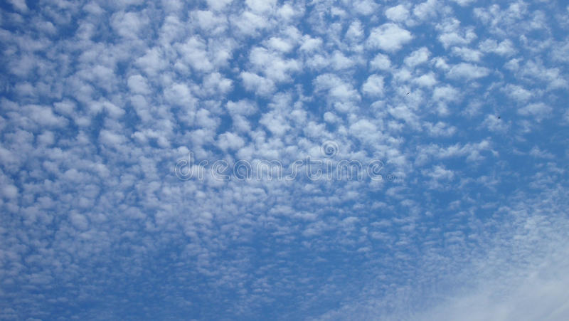 Blå himmel i små vita moln arkivfoto