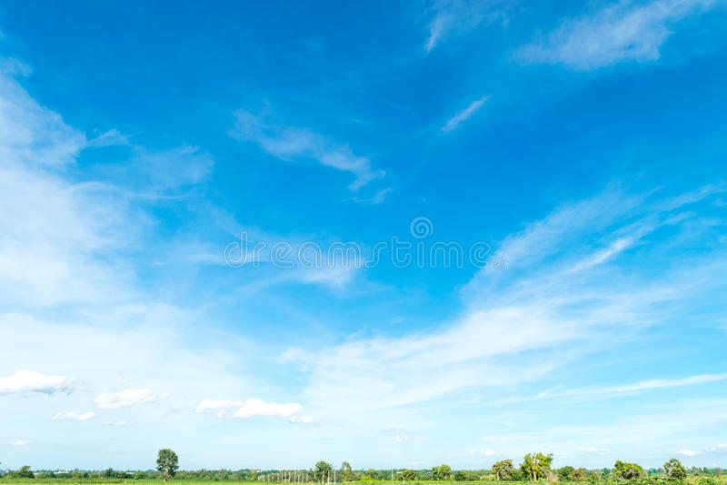 Blå himmel och moln med trädet royaltyfri foto