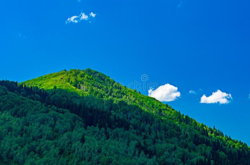 Blå himmel, vitmoln, gröna Altai berg på middagen royaltyfri fotografi