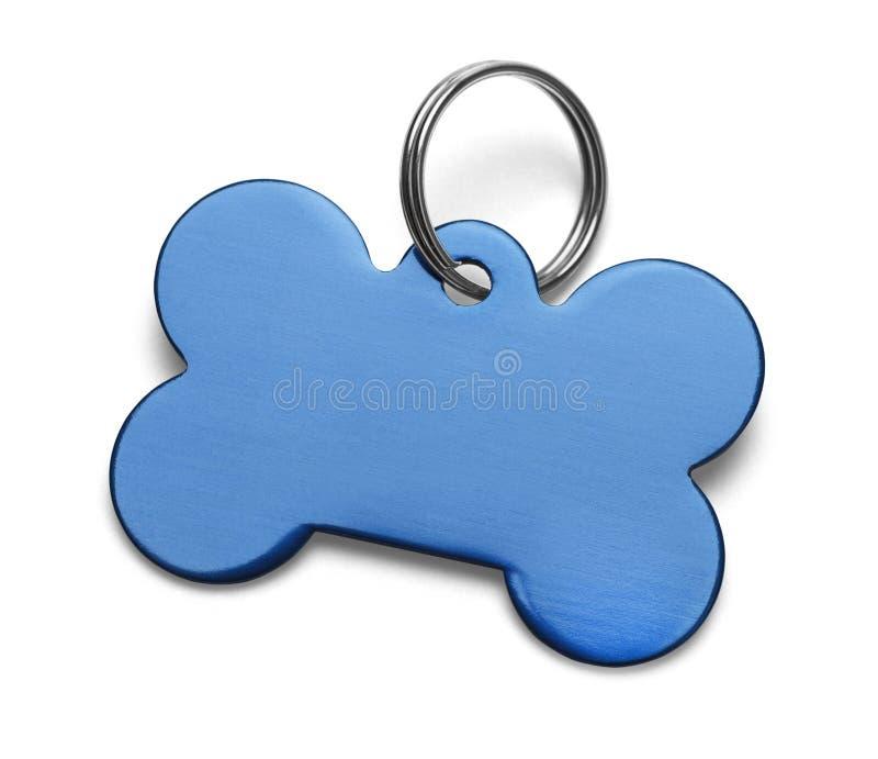 Blå hundetikett royaltyfri bild