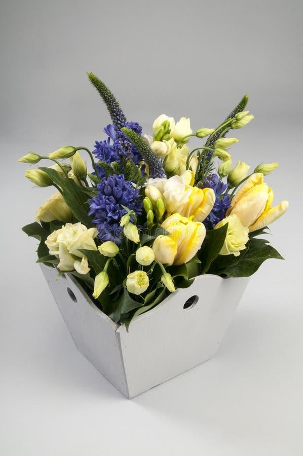 Blå hyacint och gula tulpan i vas arkivbild