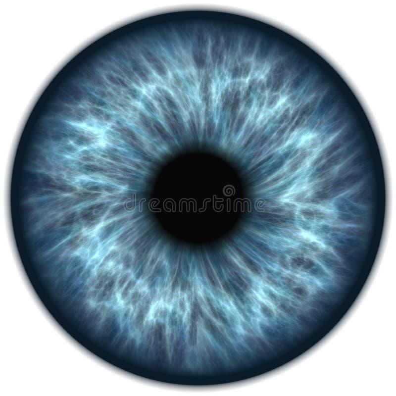 Blå iris royaltyfri illustrationer