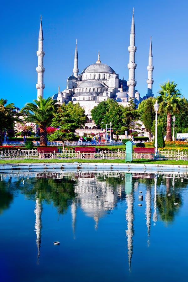 blå istanbul moskékalkon royaltyfri bild
