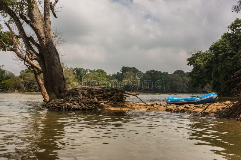 Blå jolle på den Kaveri River holmen, Indien royaltyfri foto
