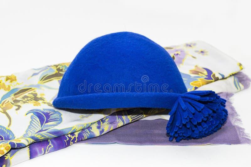 Blå klädd med filt hatt och woolen halsduk royaltyfria bilder