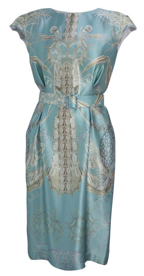 blå klänningmaike arkivbilder