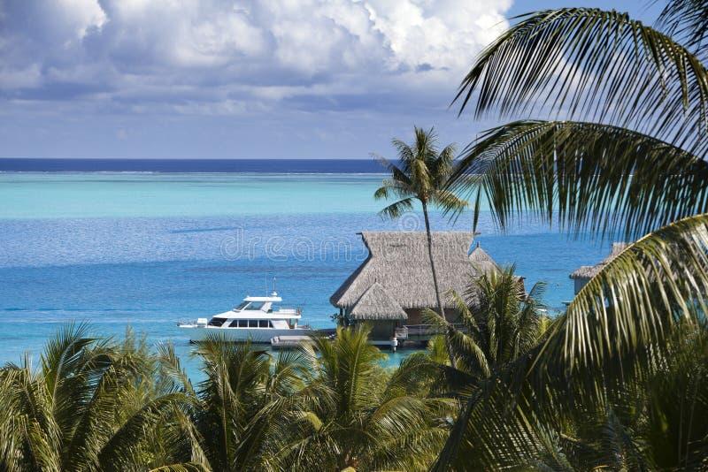 Blå lagun av den Bora Bora ön, Polynesien Bästa sikt på palmträd, traditionella logar över vatten och havet royaltyfria bilder