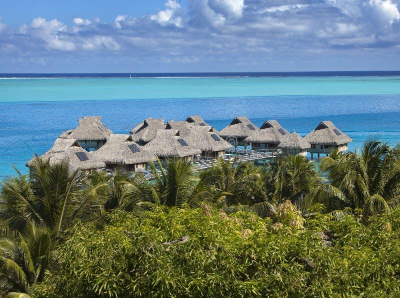 Blå lagun av den Bora Bora ön, Polynesien Bästa sikt på palmträd, traditionella logar över vatten och havet fotografering för bildbyråer