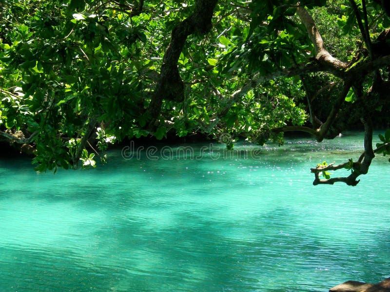 Blå lagun, Efate, Vanuatu fotografering för bildbyråer