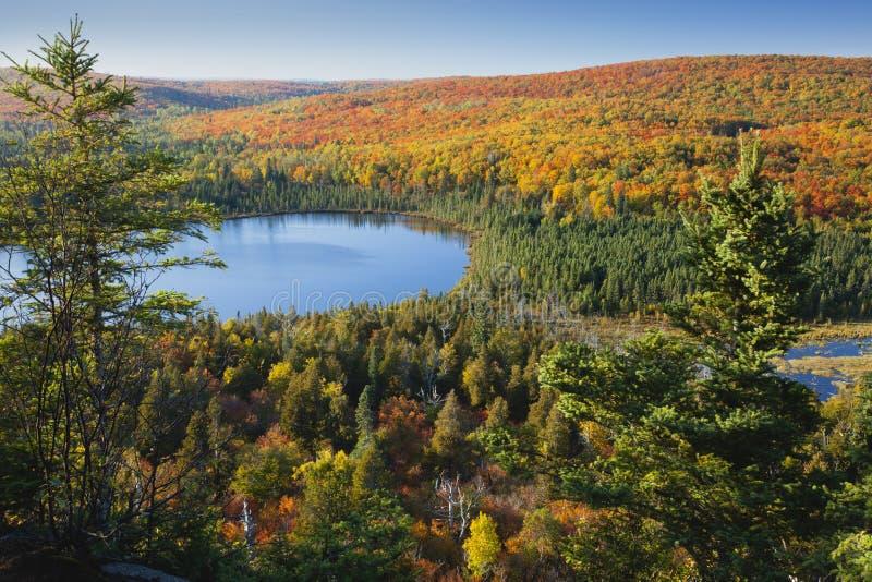 Blå lake amid färgrika falltrees i Minnesota royaltyfri bild