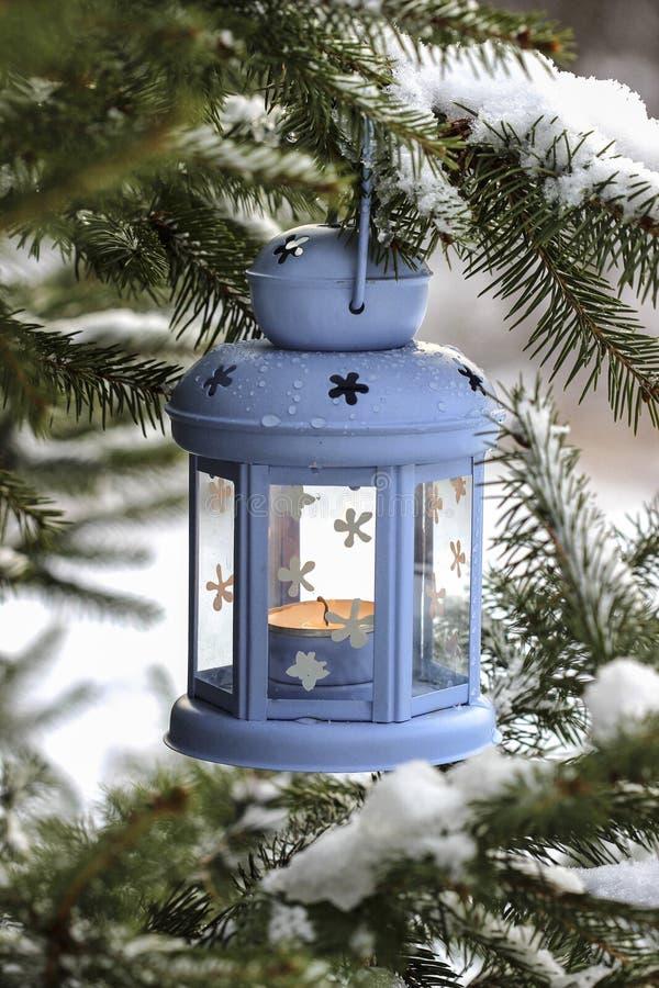 Blå lykta som hänger på granfilial svart blått footwayfotolandskap tonade vita vinterträn royaltyfria bilder