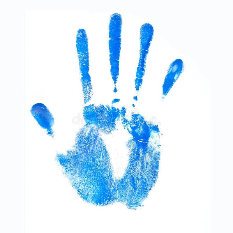 Blå mänsklig handprint för färgpulver Gömma i handflatan på en vit bakgrund royaltyfri illustrationer