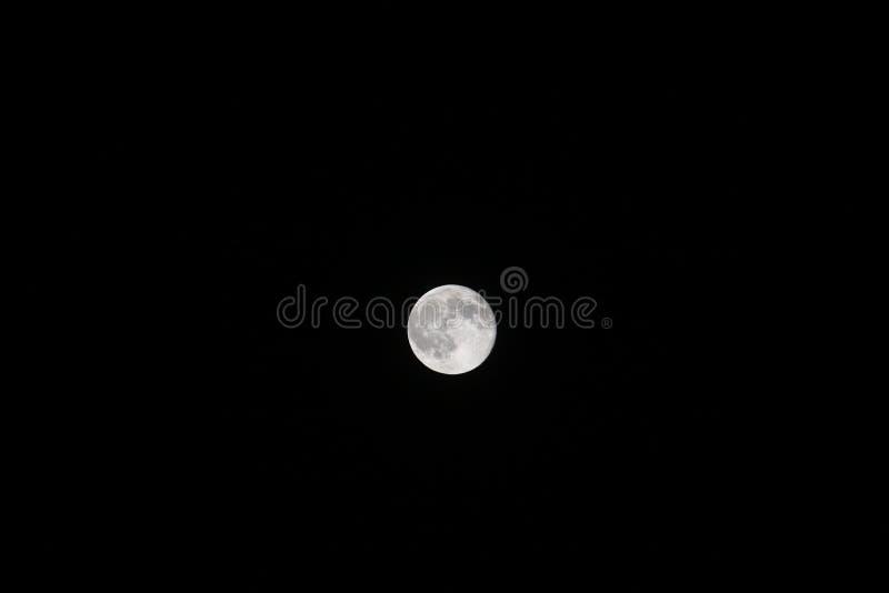 Blå måne i Ohio himmel royaltyfri bild