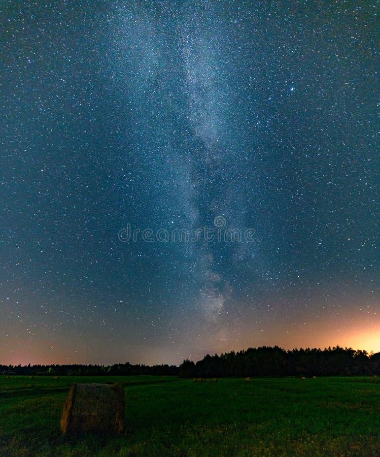 Blå mörk natthimmel med det ovannämnda fältet för många stjärnor av träd royaltyfri foto