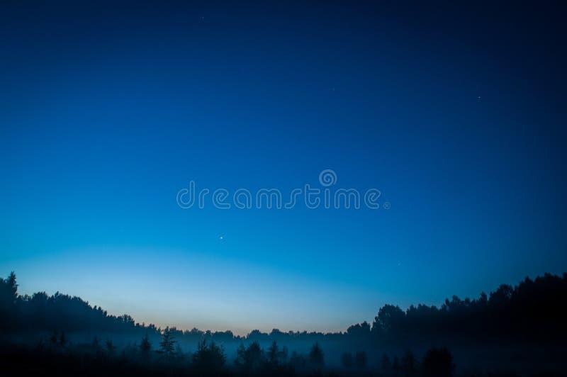 Blå mörk natthimmel med det ovannämnda fältet för många stjärnor av träd Milkyway kosmos royaltyfri bild