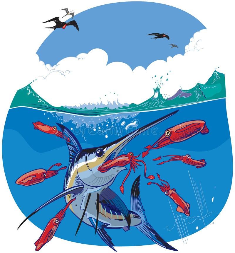 Blå Marlin Chasing Red Squid Vector illustration royaltyfri illustrationer