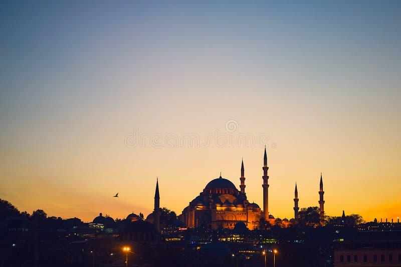 Blå masque i Istanbul arkivbilder