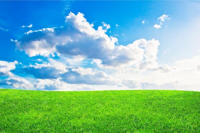 blå molnig gräsgreensky royaltyfri fotografi
