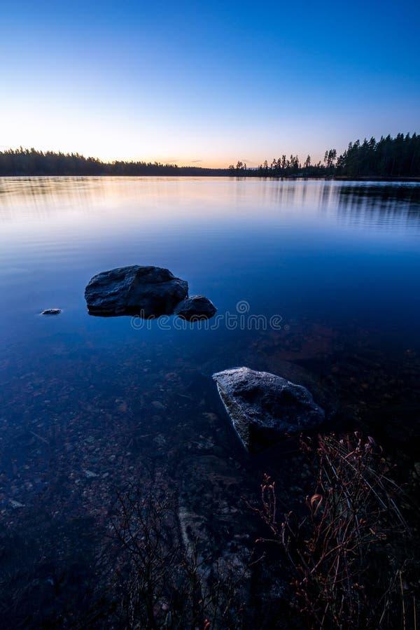 Blå morgon vid skogsjön royaltyfria bilder