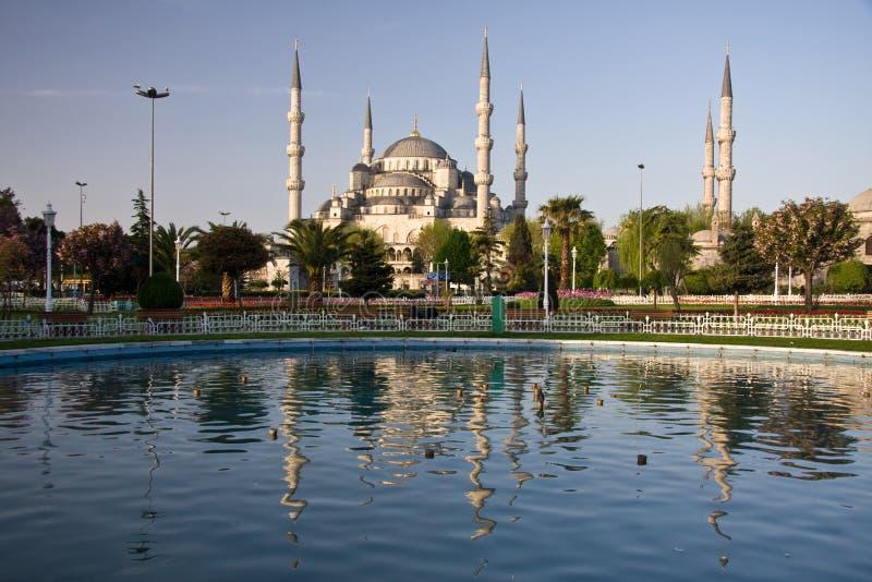 blå moskéreflexion royaltyfri bild