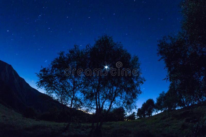 blå natt arkivfoton